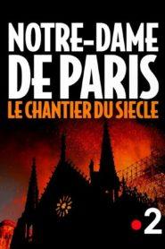 Notre-Dame de Paris : le chantier du siècle
