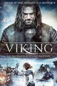 Viking la naissance d'une nation