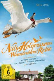 Le merveilleux voyage de Nils Holdergersson au pays des oies sauvages