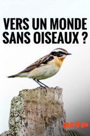 Vers un monde sans oiseaux