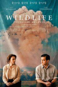 Wildlife – Une saison ardente