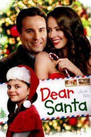 Le plus beau des cadeaux (Dear Santa)