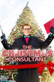 Un Noël sur mesure