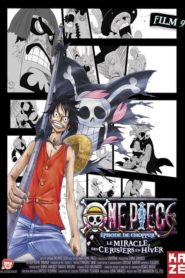 One Piece – Film 9 : Episode of Chopper