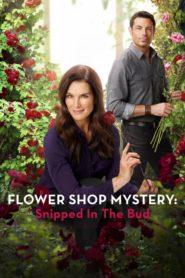 Petits meurtres et chrysanthèmes 2 – Les roses de la vengeance