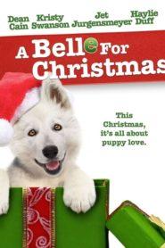 Le Noël de Belle