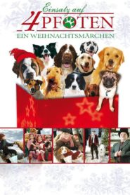 12 chiens pour Noël