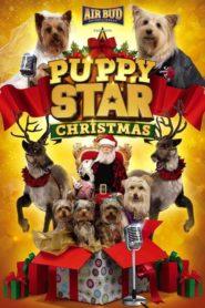Puppy Star : c'est Noël !