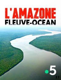 L'Amazone Fleuve-océan