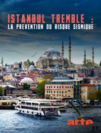 Istanbul tremble La prévention du risque sismique