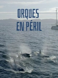 Orques en peril