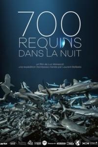 700 requins dans la nuit