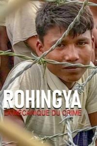 Rohingya la mécanique du crime