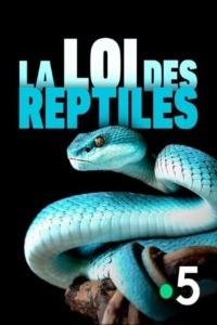 La loi des reptiles