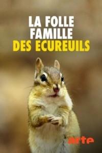 La folle famille des écureuils