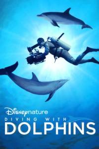 Plongée dans le Monde des Dauphins