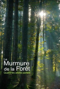 Le murmure de la forêt : quand les arbres parlent
