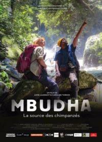 Mbudha – La source des chimpanzées
