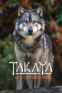 Takaya le loup solitaire