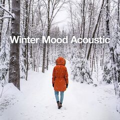Various Artists – Winter Mood Acoustic (2021)