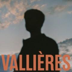 Vincent Vallières - Toute beauté n'est pas perdue
