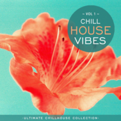 Various Artists – Chill House Vibes Vol 1 (2021)