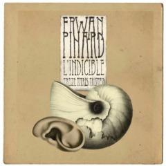 Erwan Pinard - L'indicible (Treize titres tristes)